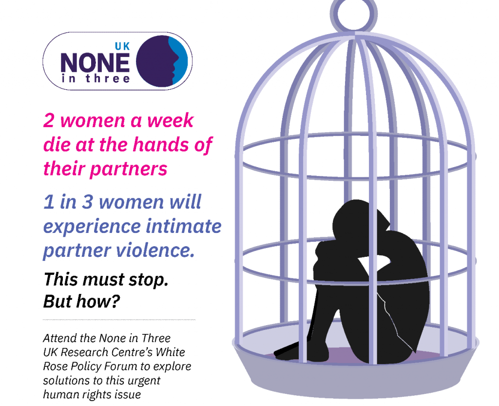 Flyer for Ni3 UK policy event on Monday 8th March